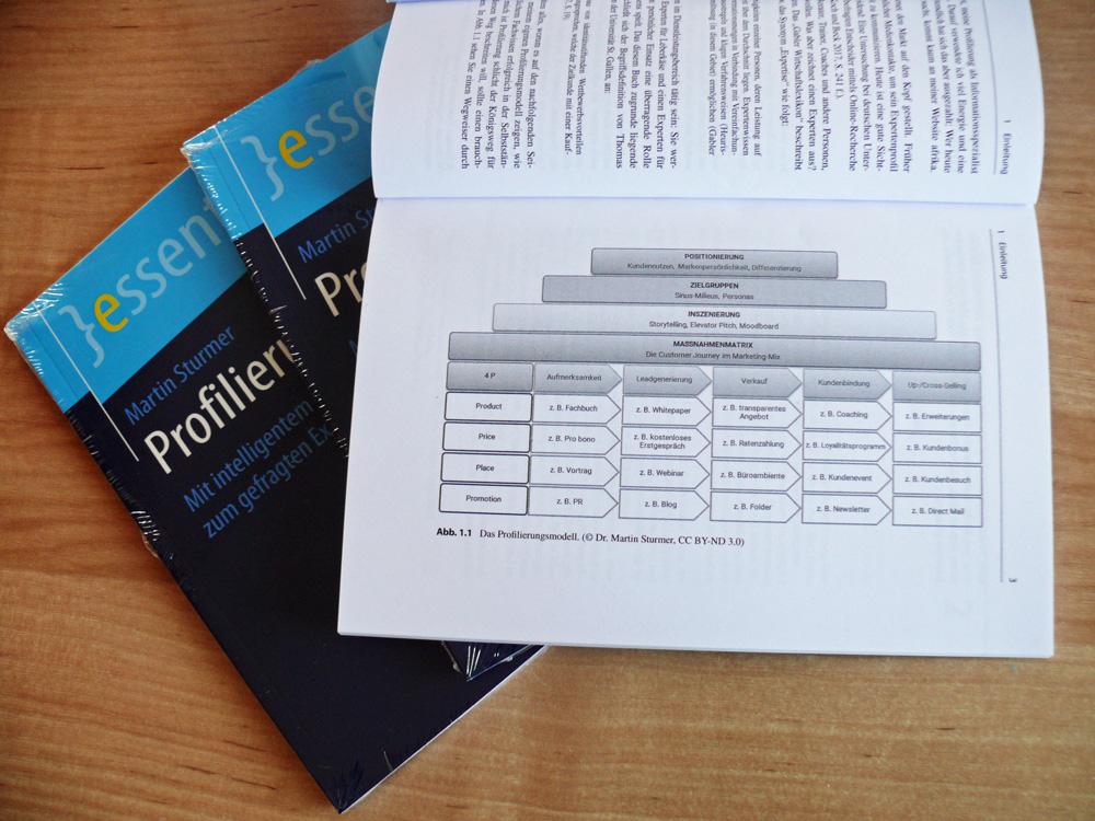 Das Profilierungsmodell im Buch Profilierung von Martin Sturmer