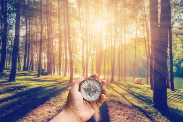 Der Zielkompass: So sortieren Sie Ihre Prioritäten